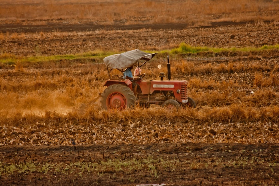 tractor, machine, plow, tool, land, field, vehicle