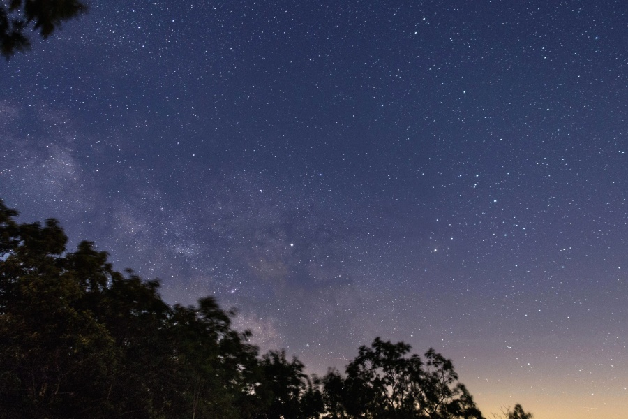 night, nature, star, galaxy, universe, sky, tree