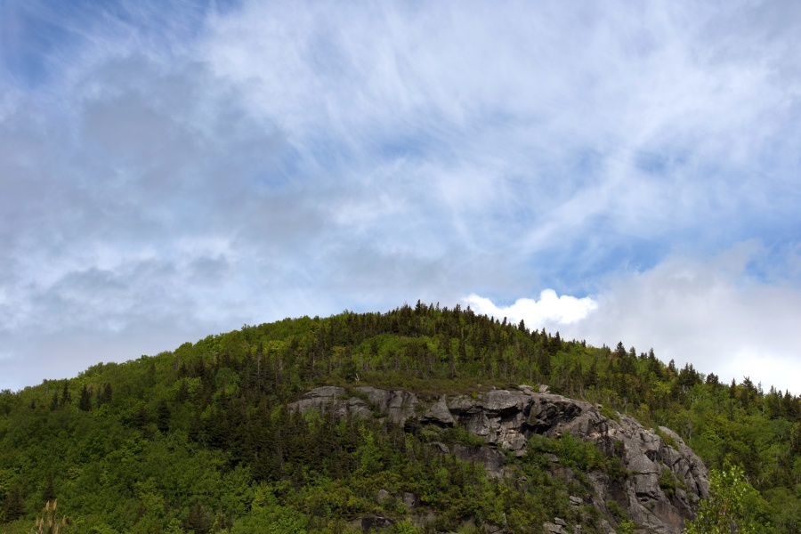 hill, forest, blue sky, nature, landscape, trees, roc, sky, mountain
