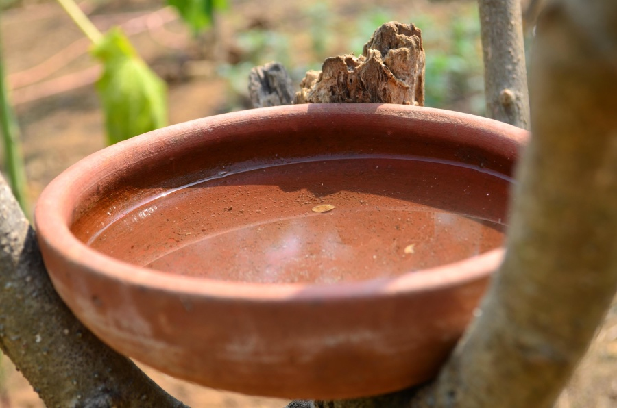 pottery, ceramics, water, bowl, object