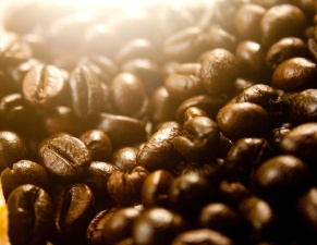 coffee bean, macro, seed, brown, detail