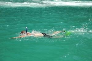 다이빙, 수영, 수 중, 바다, 사람, 스포츠