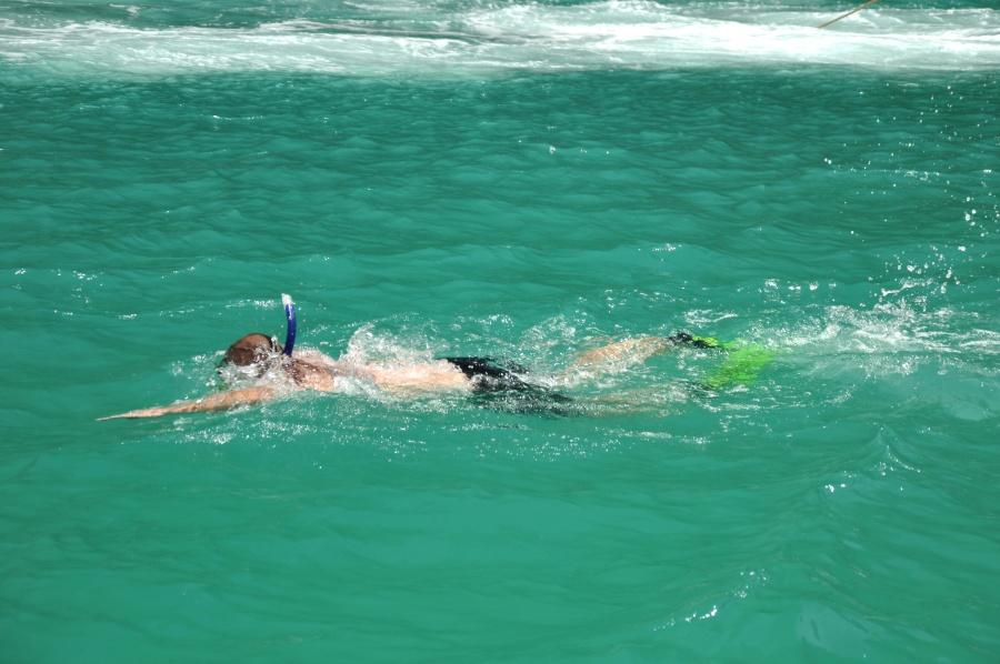 dive, swimming, underwater, sea, man, sport