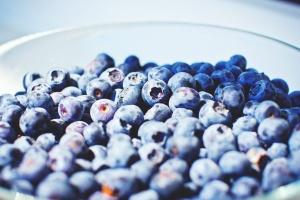 Bio, bleuet, fruit, nourriture, bleu, macro, bol