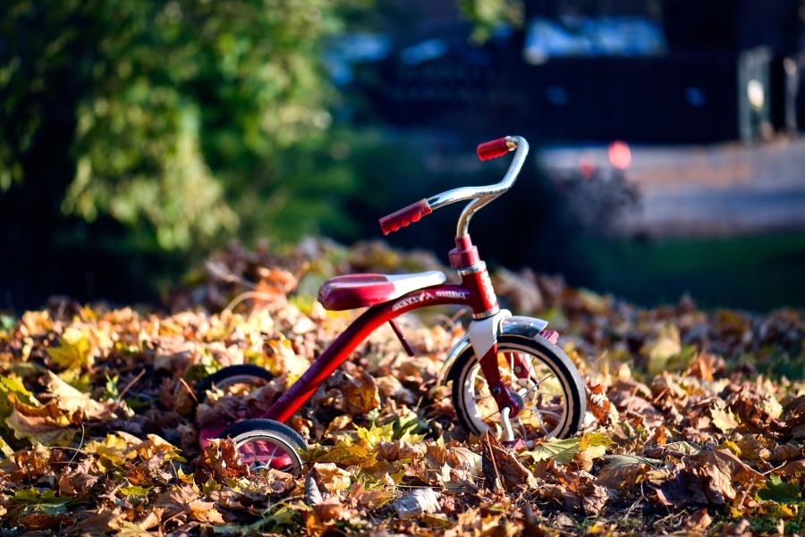 red, retro, tricycle, object