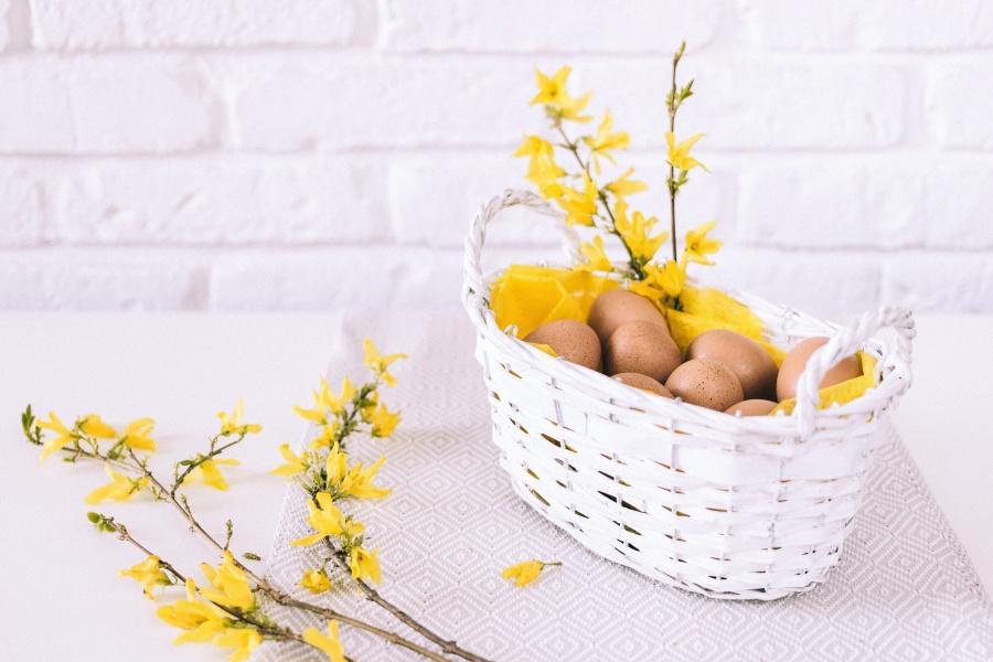 blomma, stilleben, dekoration, korg, ägg