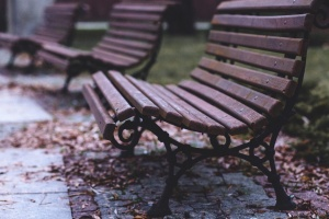 bench, park, autumn, furniture