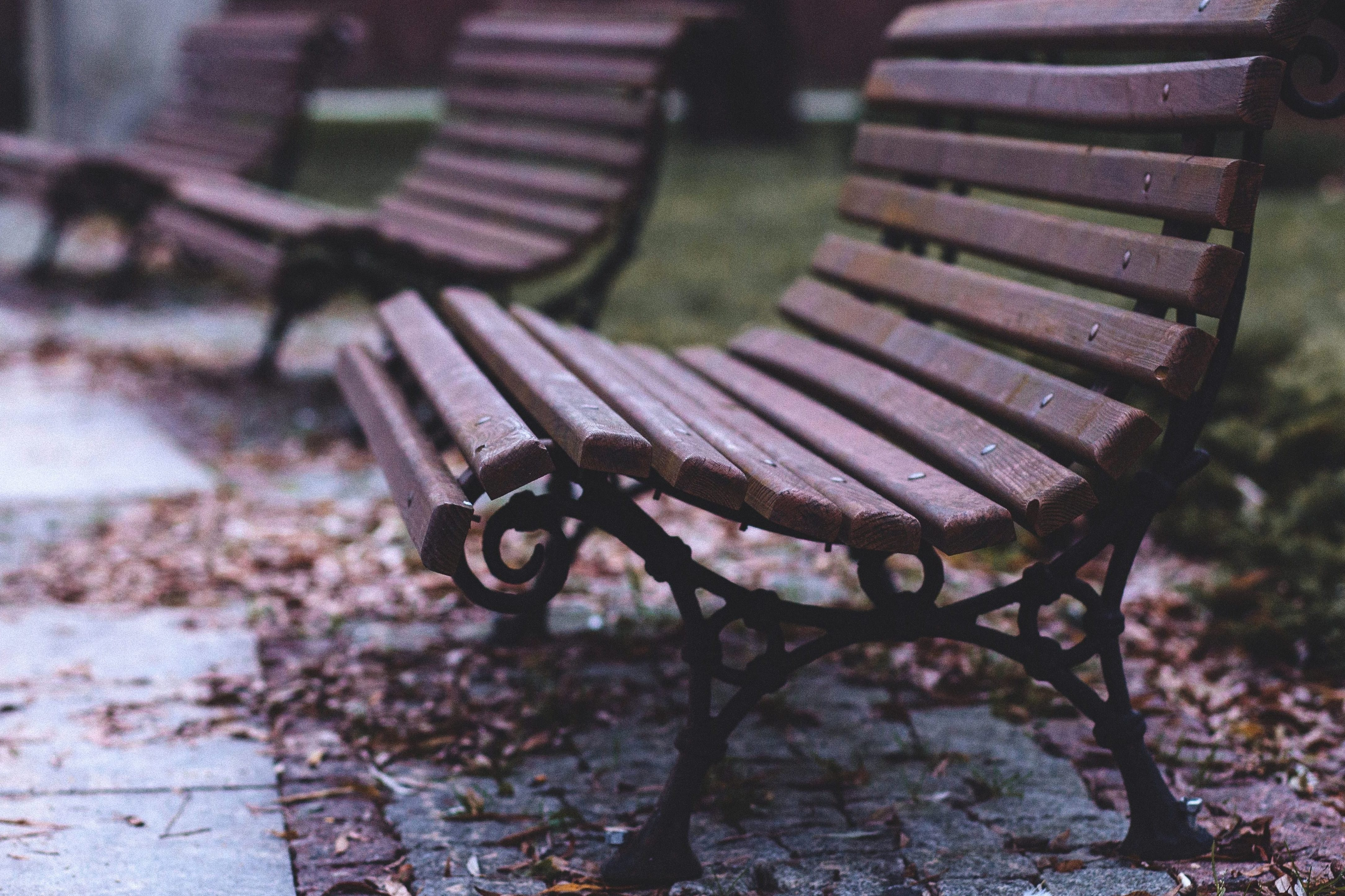 Free Picture Bench Park Autumn Furniture
