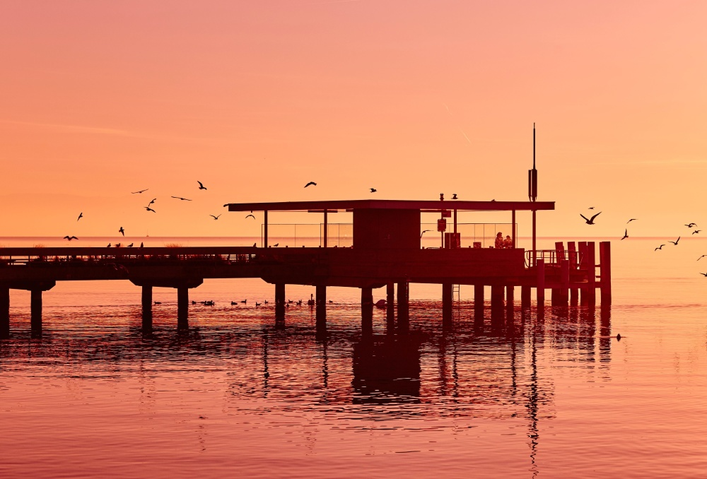 seashore, sunset, pier, dusk, reflection, water, dock