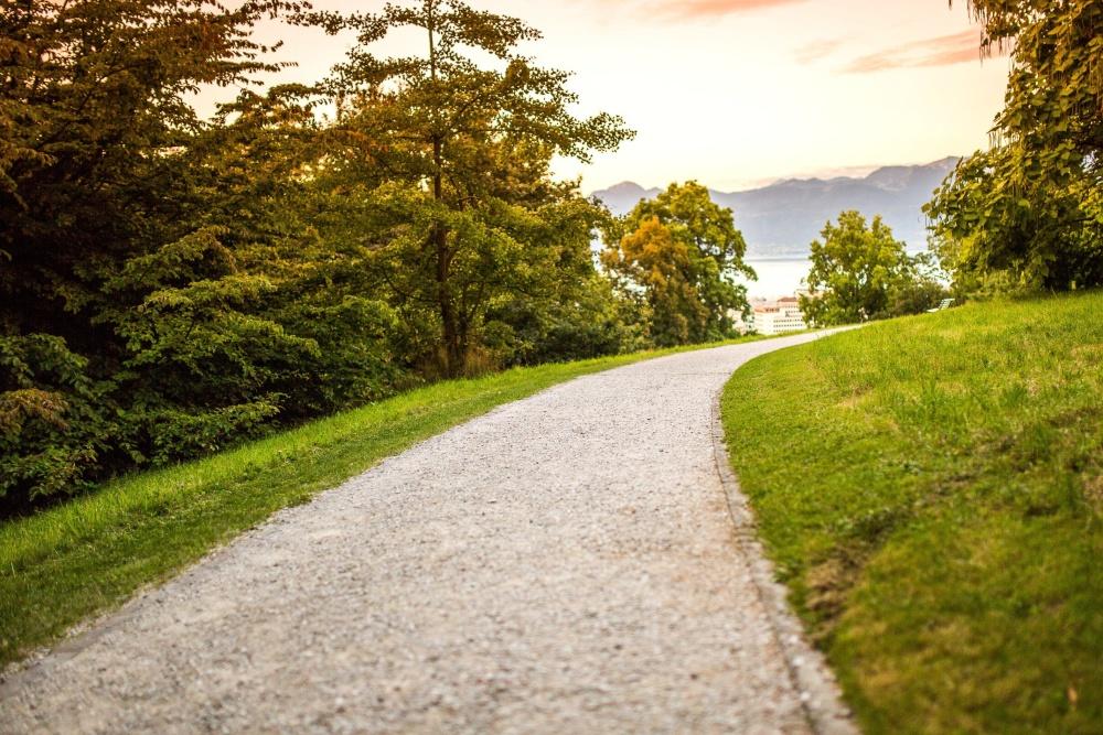 Route, herbe, arbres, coucher de soleil, asphalte, paysage, ciel