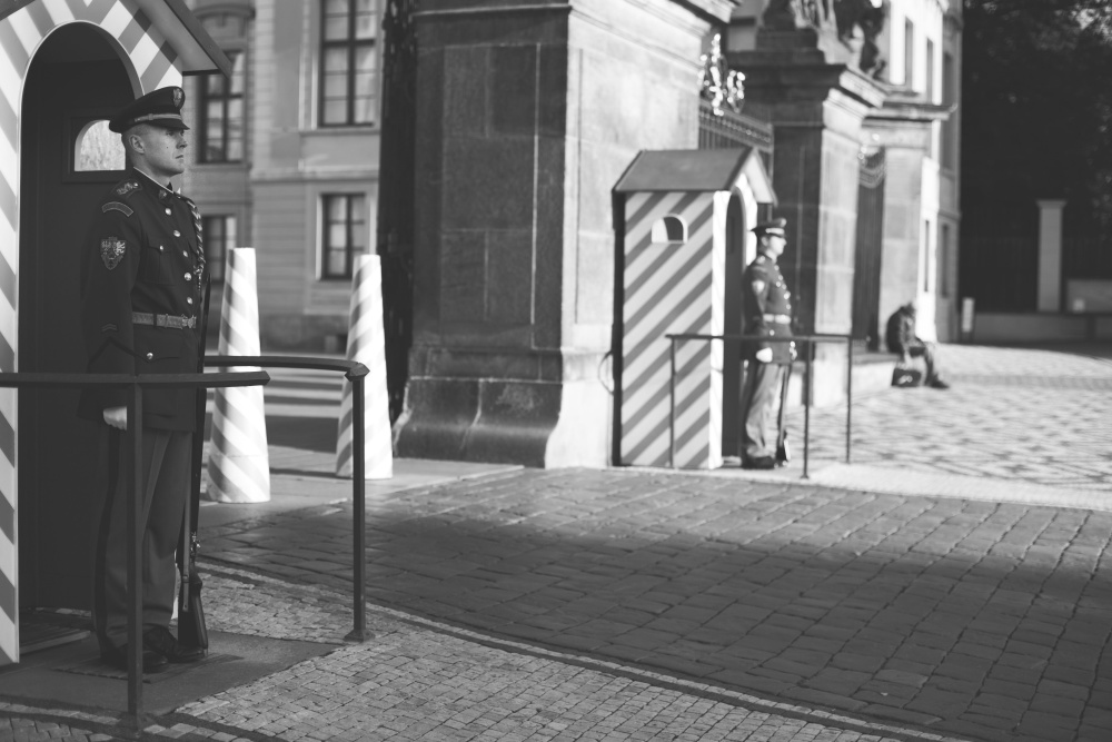 soldier, street, guard