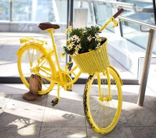 still life, antique, yellow, bicycle, flower
