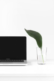 minimal design, laptopcomputer, glas, water