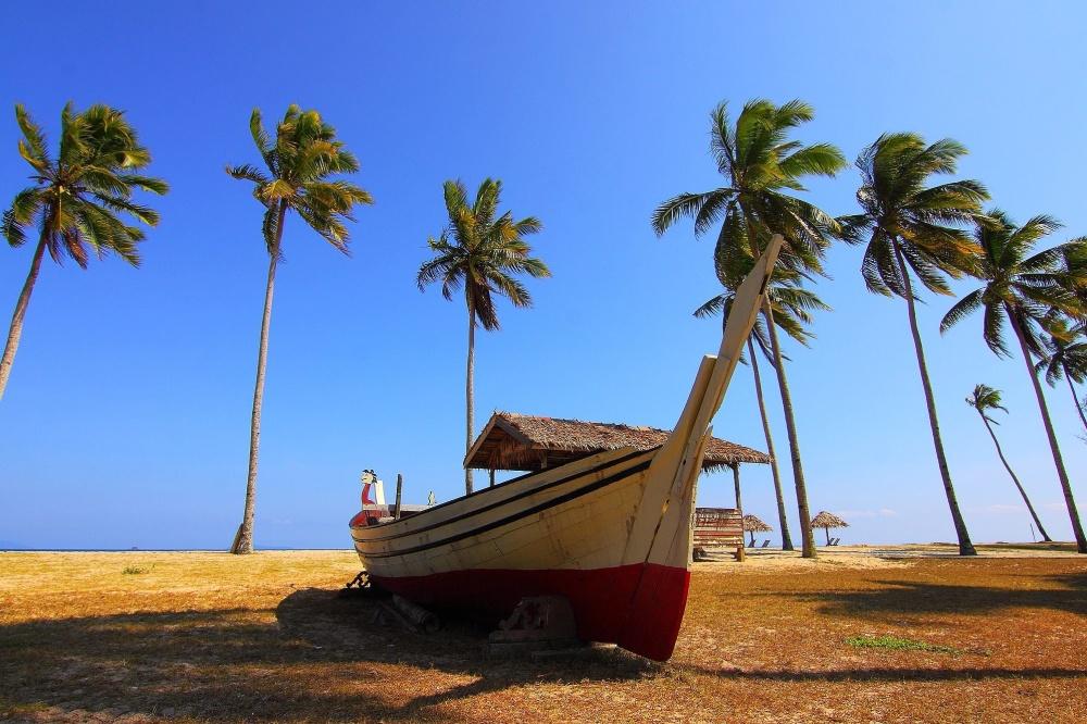 palm trees, blue sky, boat, beach, sky, sand, landscape, summer