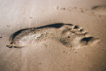 footstep, sand, texture, brown, wet, surface