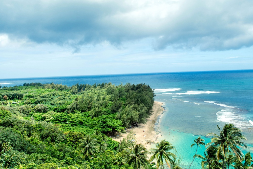 Paraíso, laguna, cielo, agua, paisaje, mar, verano, océano, playa, árbol