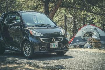 Campo, coche, bosque, camino, asfalto, turismo, vehículo, automóvil