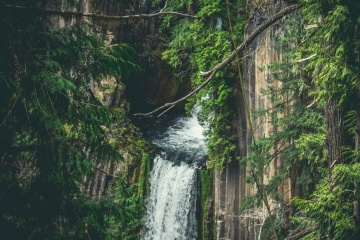 waterfall, jungle, tropic, forest, landscape, river, water, tree