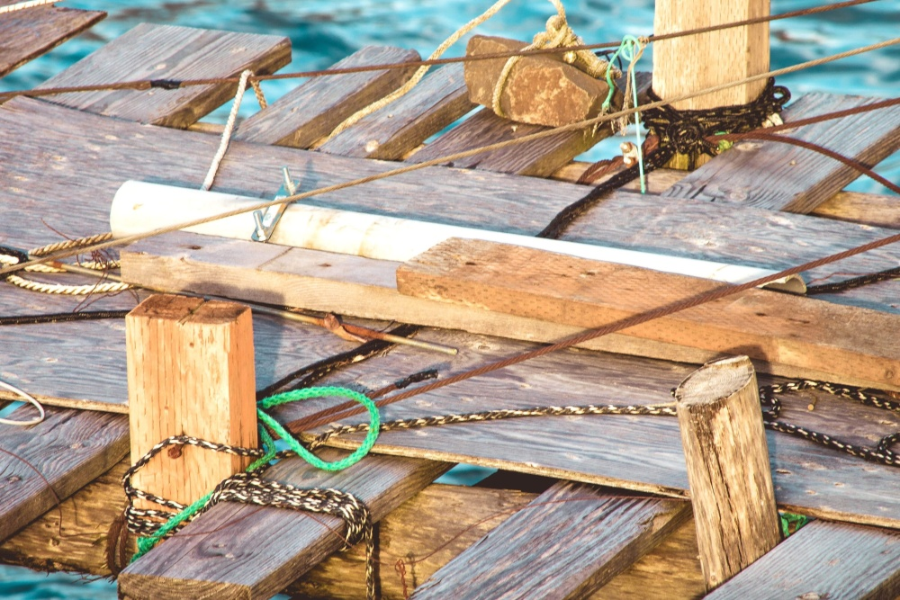 dock, wooden, old, wood, rope, water