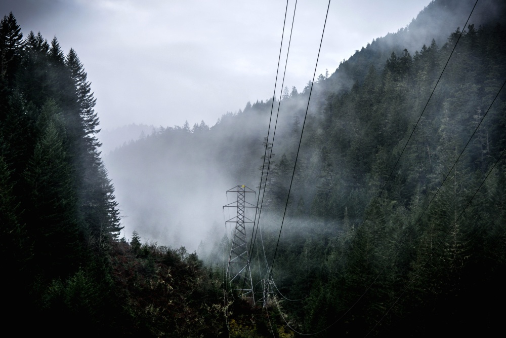 power line, electricity, forest, fog, nature, landscape, sky
