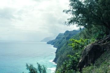 ocean, water, coast, sky, cloud, landscape, nature, tree, seashore