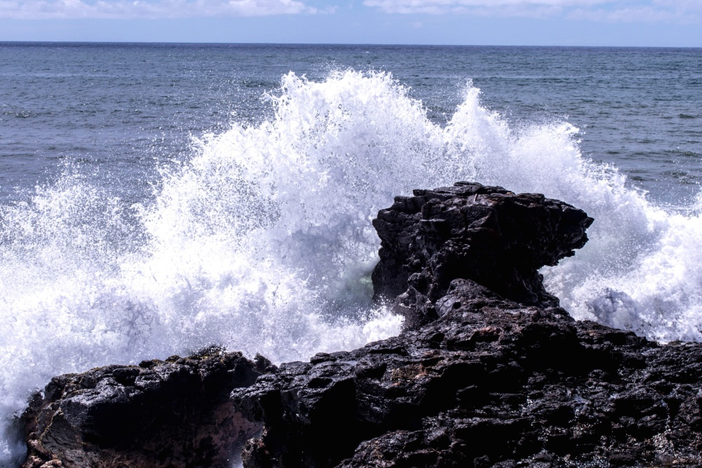 rock, splash, ocean, water, sea, seashore, wave, beach, foam, coast