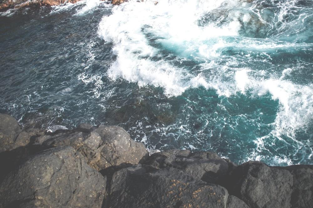 kornjača, pod vodom, oceana, mora, krajolika, more, priroda