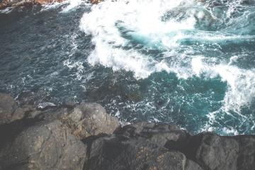 turtle, underwater, ocean, sea, landscape, seashore, nature