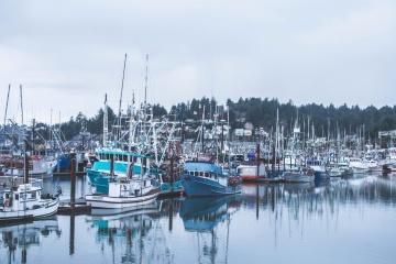 boat, dock, harbor, water, pier, marina, sea, yacht