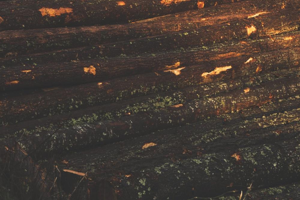 lumber, firewood, brown, wood