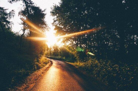sky, dusk, road, forest