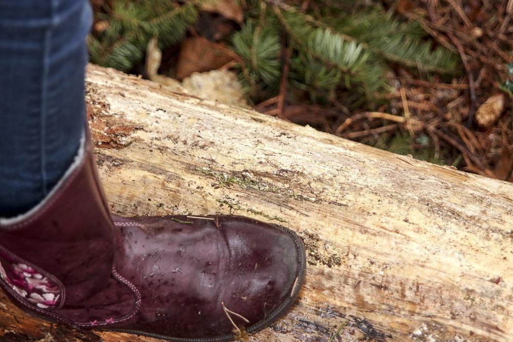крака, кожа, обувки, дърво
