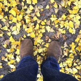Foglia, scarponi, calzature, pantaloni, autunno