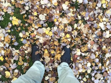 Nature, feuille, chaussures, pantalons, automne