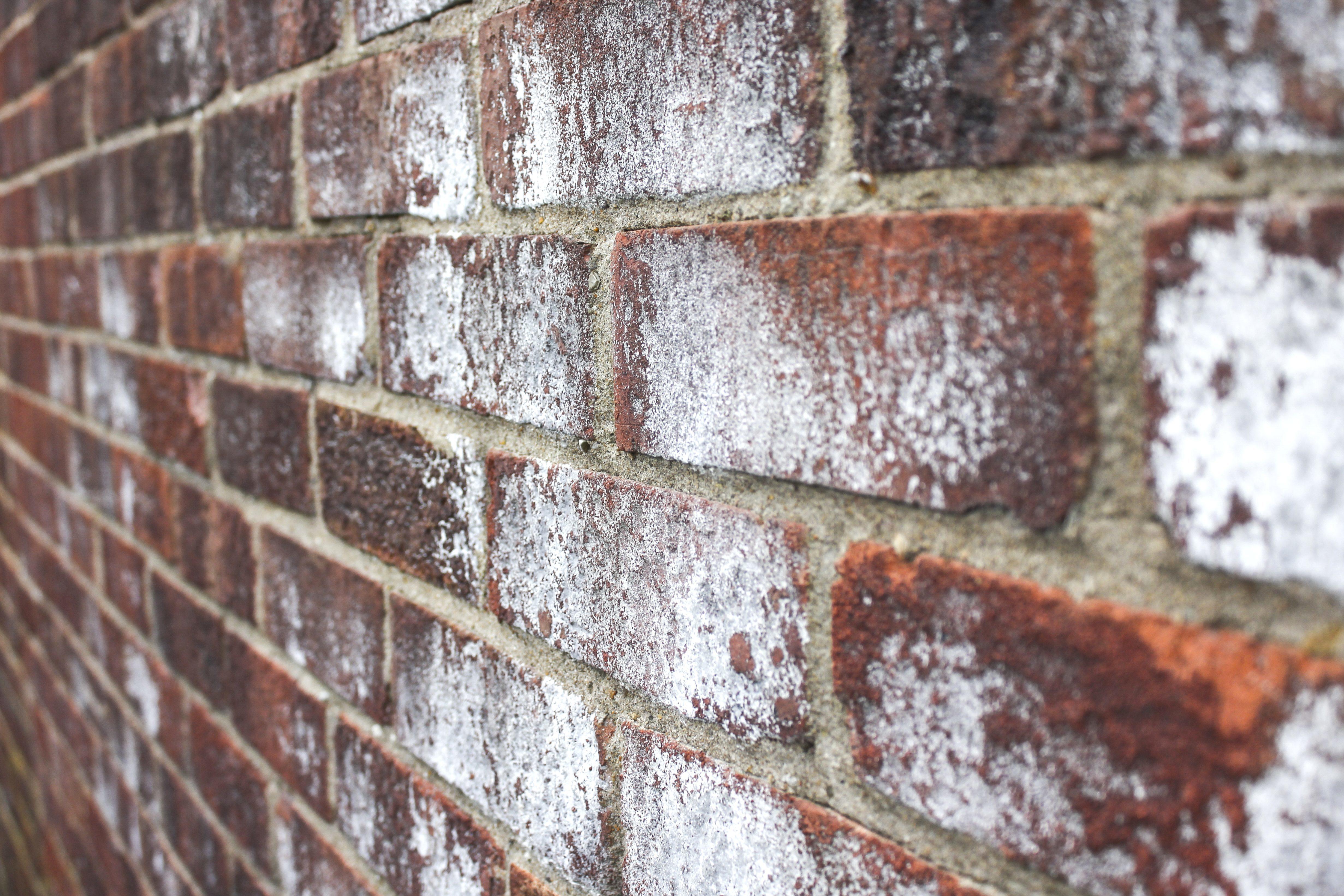 Kostenlose Bild: Wand, Ziegel, alt, Textur, Ausdruck, schmutzig ...