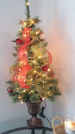 Christmas tree, light, celebration, decoration, tree, lamp