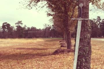 sword, tool, tree, landscape, wood, park