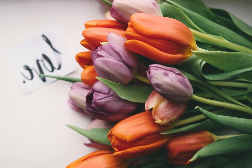 цвете, букет, лале Натюрморт, декорация, листа