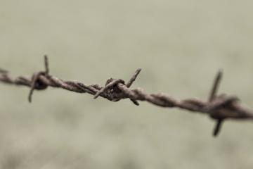 sigurnost, bodljikava žica, ograde, žice, hrđe, željezo