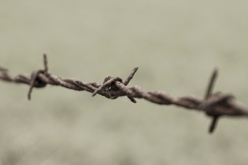 sikkerhet piggtråd gjerde, wire, rust, jern