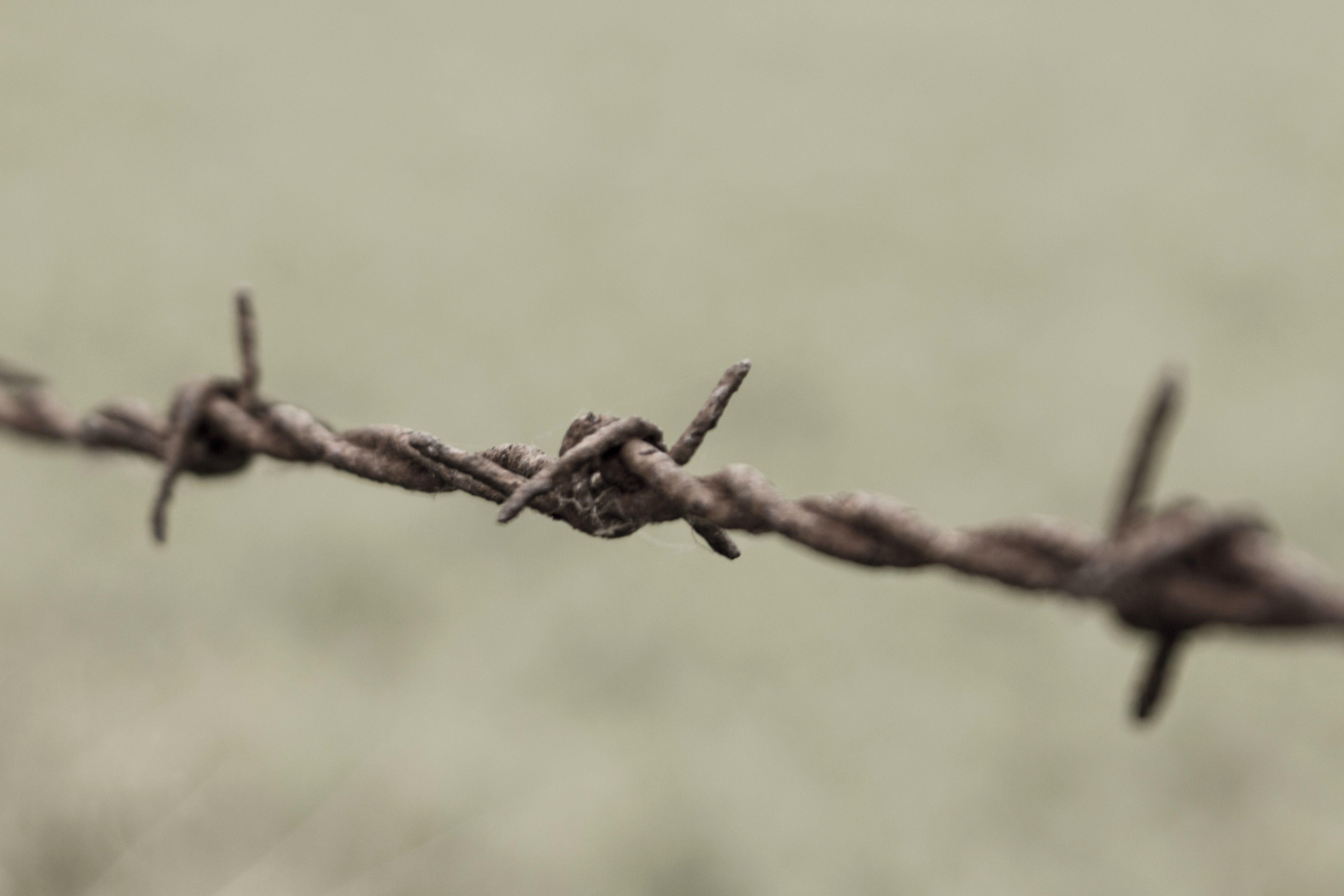 Kostenlose Bild Sicherheit Stacheldraht Zaun Draht Rost Eisen