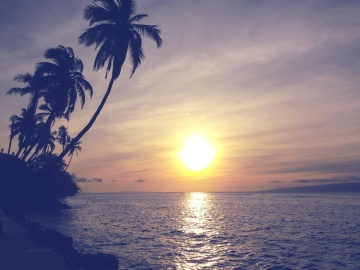 sunset, sun, beach, dawn, ocean, water, tropical island, sky