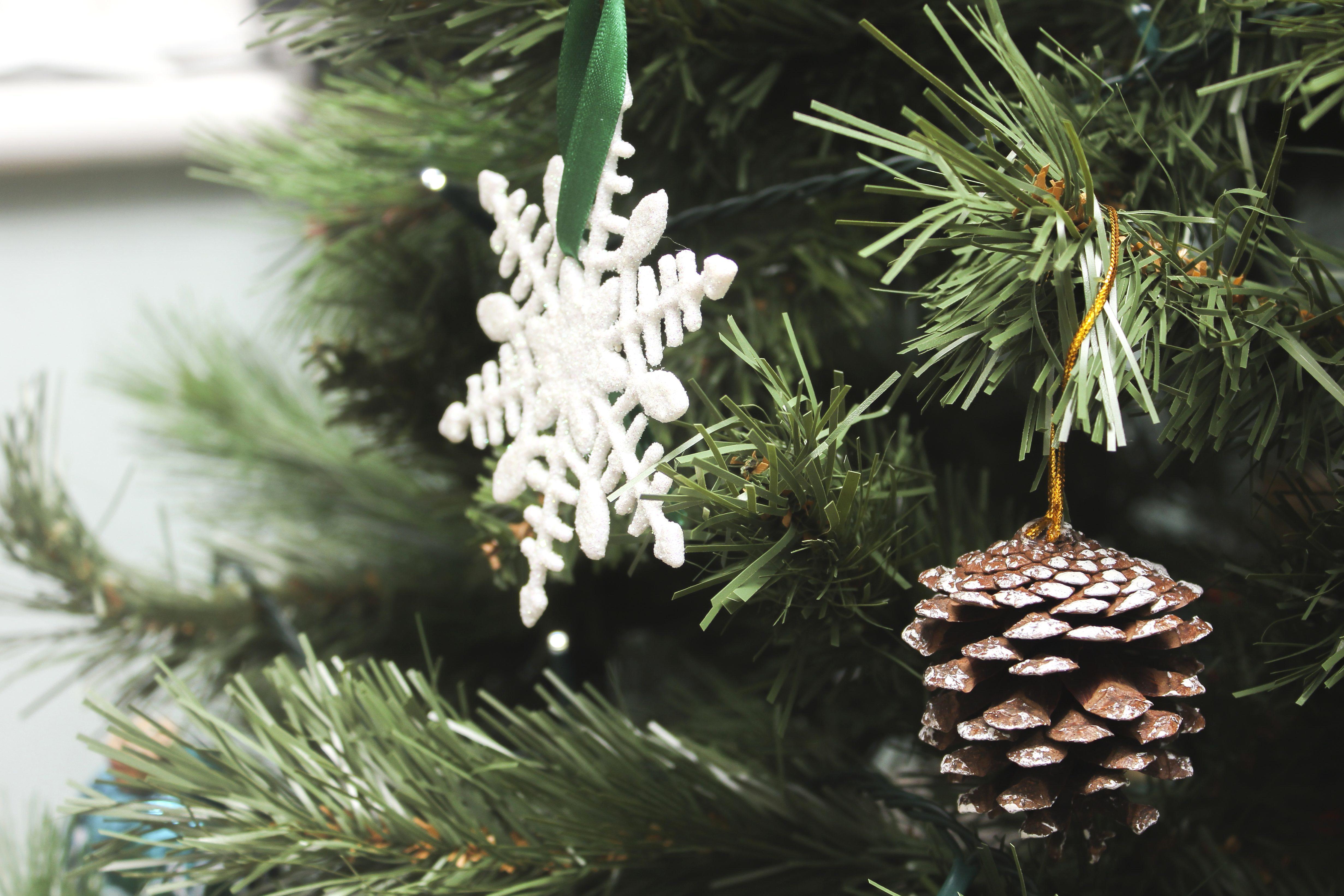Free Picture Snowflake Christmas Pine Tree Winter