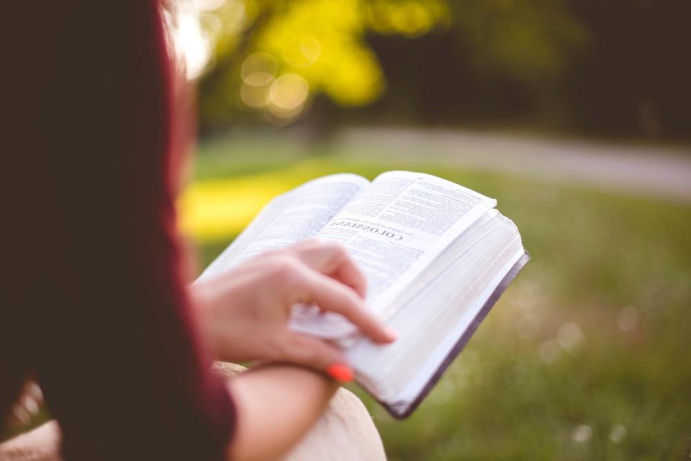 kadın, doğa, kitap, el, edebiyat
