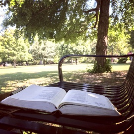 book, bench, seat, furniture, park, chair, tree, summer
