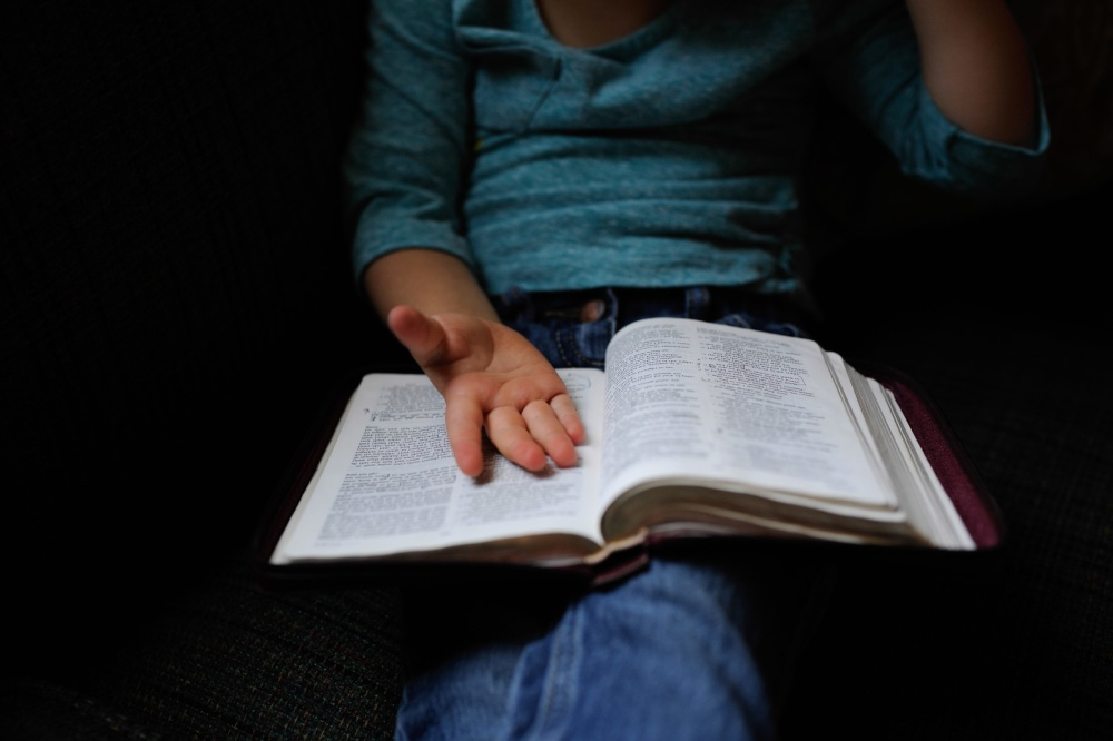 utdanning, studente, bok, skole, kunnskap, bibliotek
