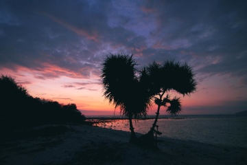 siluet, günbatımı, plaj, şafak, su, okyanus, deniz kıyısı, sis, gökyüzü, manzara
