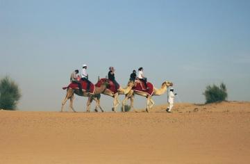 Beduino, aventura, playa, arena, desierto, camello