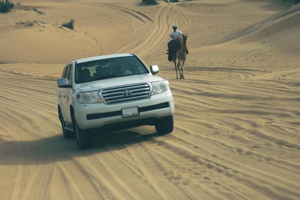 Dune de sable, véhicule, Asie, tourisme, sable, désert, plage, voiture