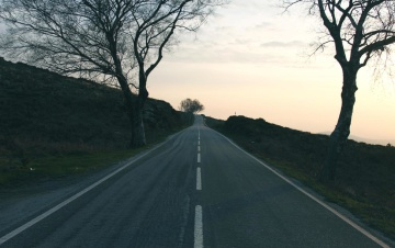 road, landscape, guidance, tree, way, highway, asphalt, rural
